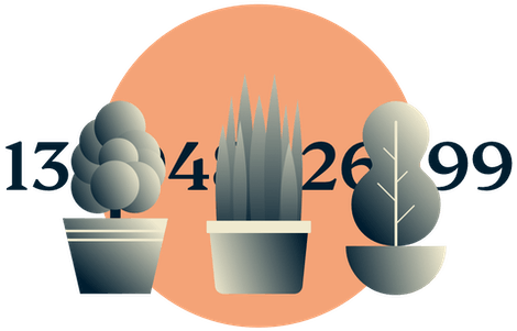 Disguise your IP address: Potted plants hiding an IP address.