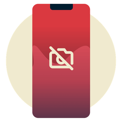 camera icon with line through it.