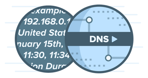 DNS logo representing how third party DNS services can log personally identifiable data