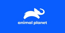Animal Planet logo.