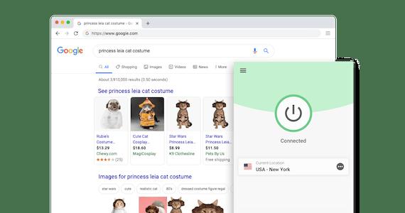 Google søkeresultat: Prinsesse Leia-kattekostyme