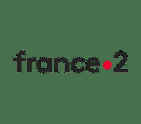 France 2 channel logo.