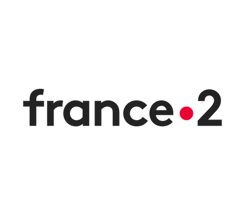 France 2 channel logo.