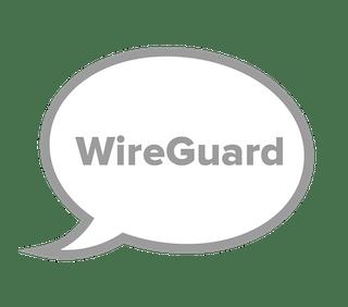 Wireguard protocol.