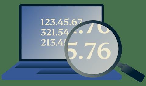 Szkło powiększające nad adresem IP na ekranie laptopa.