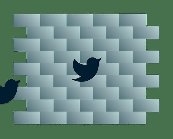 Çite çarpan Twitter kuşları.