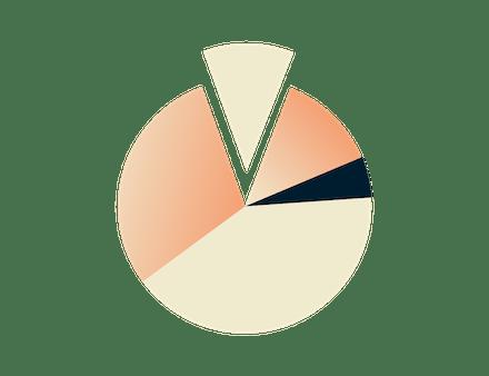Sektordiagram.