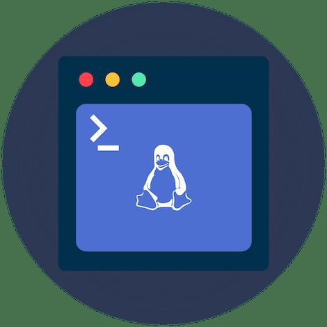 Terminale Ubuntu con ExpressVPN per Linux con Tux il pinguino nell'angolo.