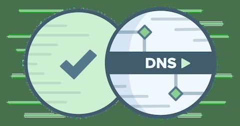 Rundes DNS-Logo mit grünem Häkchen