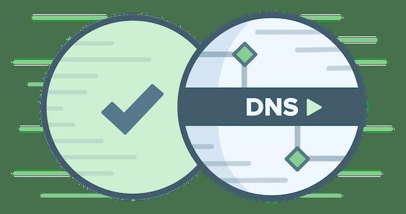โลโก้วงกลม DNS พร้อมเครื่องหมายถูกสีเขียว