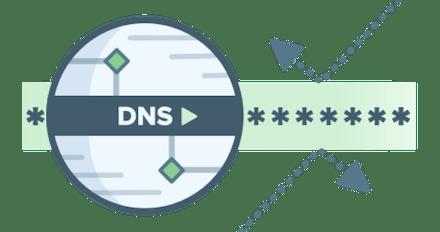 DNS с посторонними.